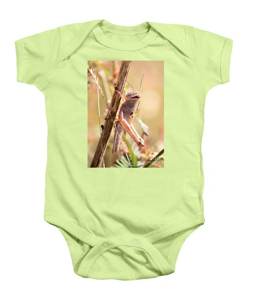 Grasshopper In The Marsh Baby Onesie by Carol Groenen
