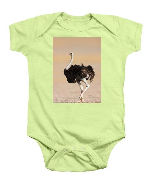 Ostrich Baby Onesie by Johan Swanepoel