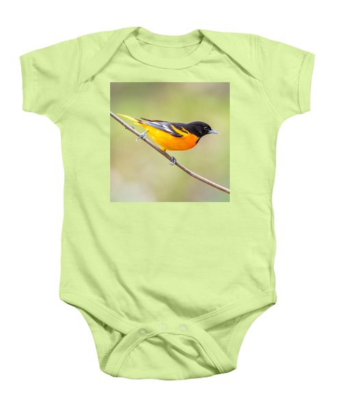 Baltimore Oriole Baby Onesie by Paul Freidlund