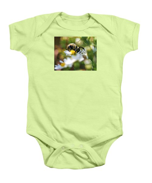 Bee On Aster Baby Onesie
