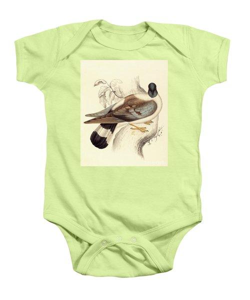 Columba Leuconota, Snow Pigeon Baby Onesie
