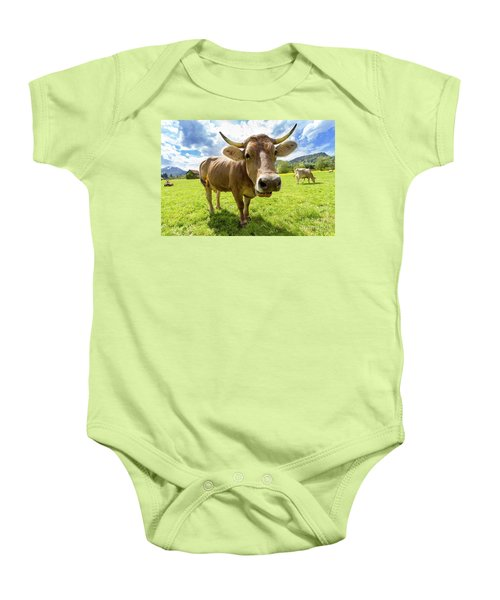 Baby Onesie featuring the photograph Cow In Meadow by MGL Meiklejohn Graphics Licensing