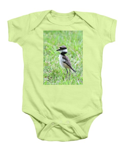 Killdeer Chick 3825 Baby Onesie