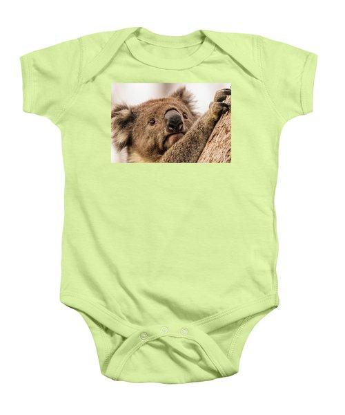 Koala 3 Baby Onesie by Werner Padarin