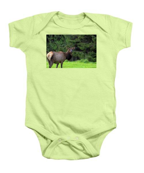 Lone Elk At Ecola State Park Baby Onesie