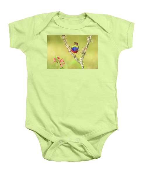 Male Painted Bunting #2 Baby Onesie by Tom and Pat Cory