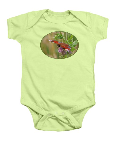Peacock Butterfly On Thistle Baby Onesie by Gill Billington