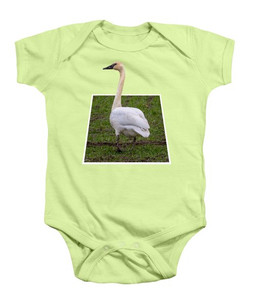 Portrait Of A Swan Out Of Frame Baby Onesie