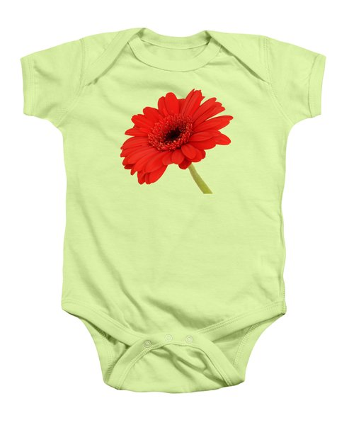 Red Gerbera Daisy 2 Baby Onesie by Scott Carruthers