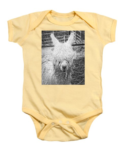 Black And White Alpaca Photograph Baby Onesie by Keith Webber Jr