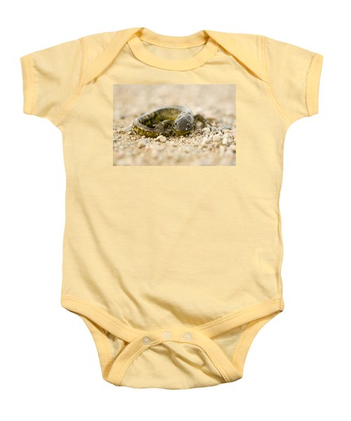 Close Up Tiger Salamander Baby Onesie by Mark Duffy