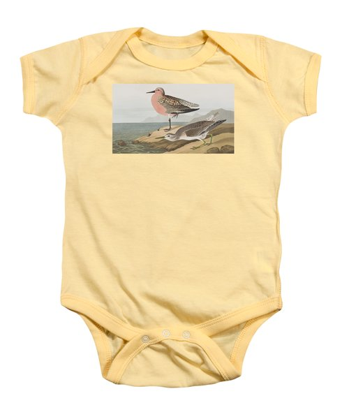 Red-breasted Sandpiper  Baby Onesie by John James Audubon