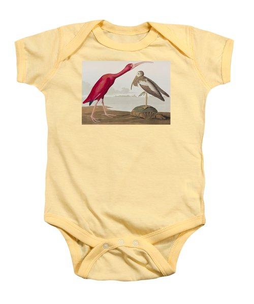 Scarlet Ibis Baby Onesie by John James Audubon