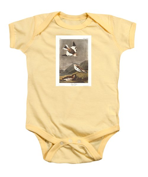 Snow Bunting Baby Onesie by Rob Dreyer