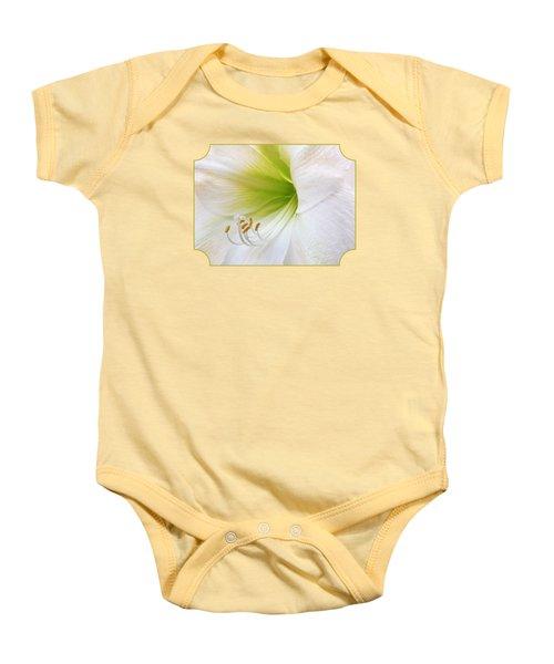 Alluring Amaryllis Square Baby Onesie