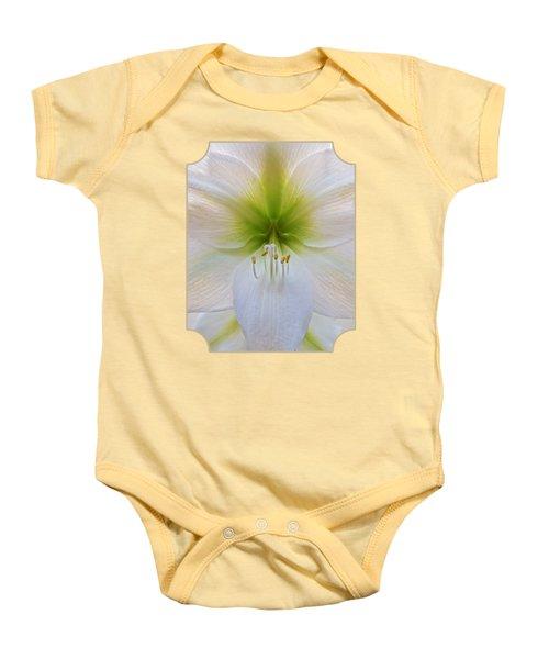 Alluring Amaryllis Vertical Baby Onesie