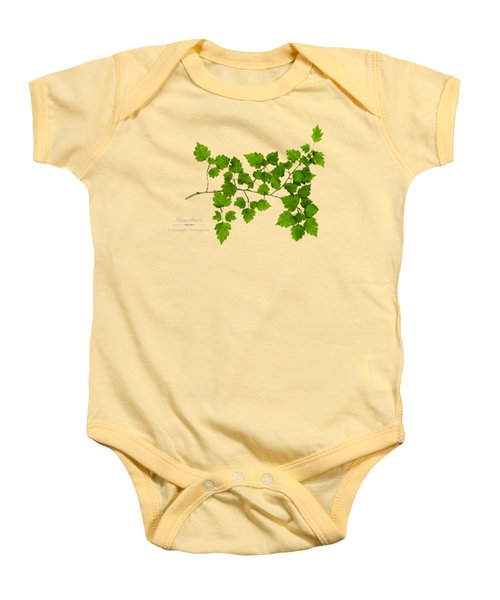 Baby Onesie featuring the photograph Hawthorn by Christina Rollo