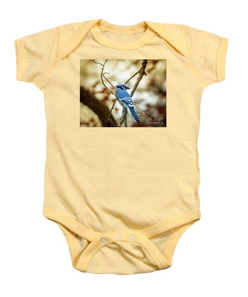 Blue Jay Baby Onesie by Robert Frederick