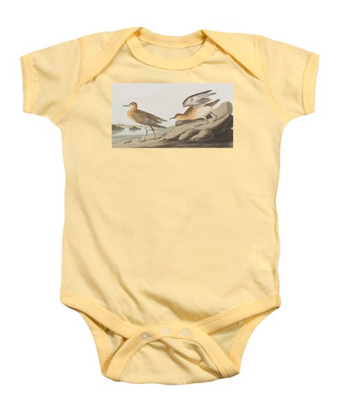 Buff Breasted Sandpiper Baby Onesie