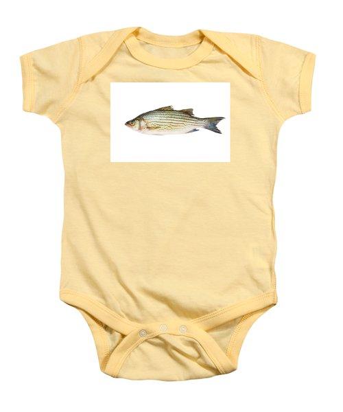Fish Baby Onesie