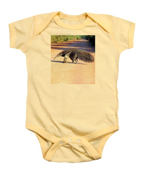 Giant Anteater Crosses The Transpantaneira Highway In Brazil Baby Onesie