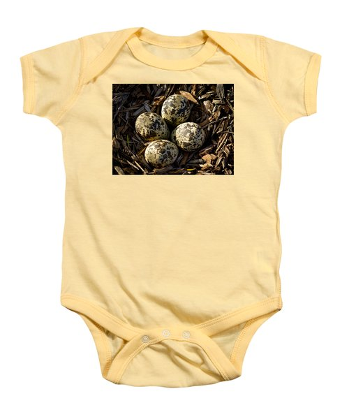 Quartet Of Killdeer Eggs By Jean Noren Baby Onesie by Jean Noren