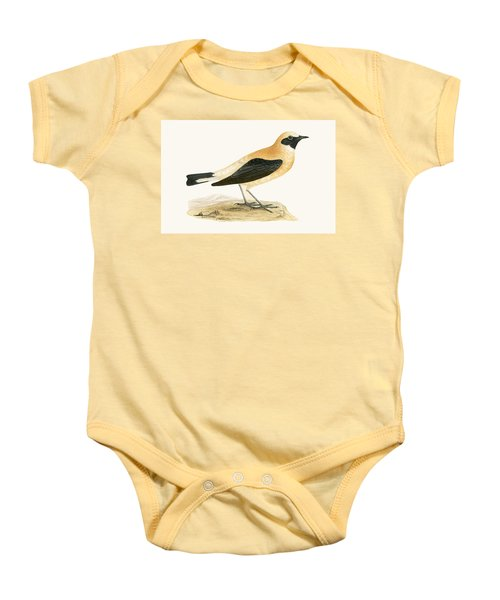 Russet Wheatear Baby Onesie by English School