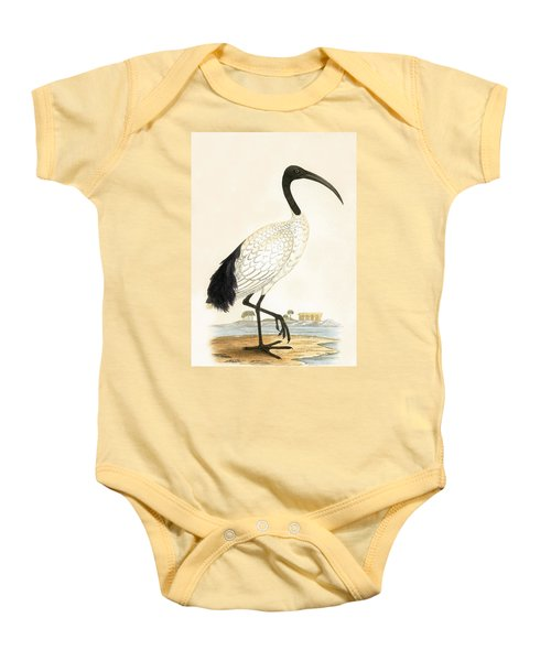 Sacred Ibis Baby Onesie by English School