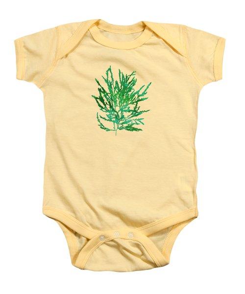 Baby Onesie featuring the mixed media Sea Green Seaweed Art Odonthalia Dentata by Christina Rollo