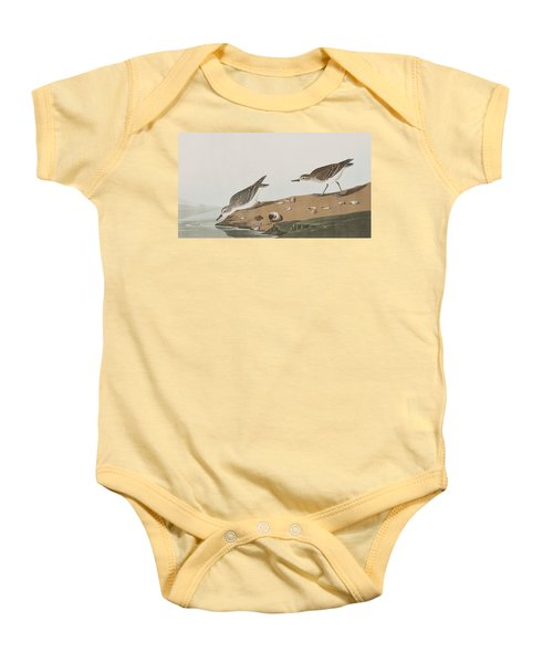 Semipalmated Sandpiper Baby Onesie