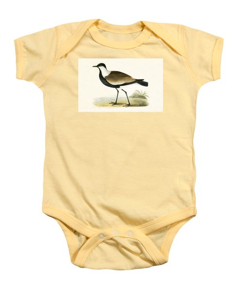 Spur Winged Plover Baby Onesie by English School
