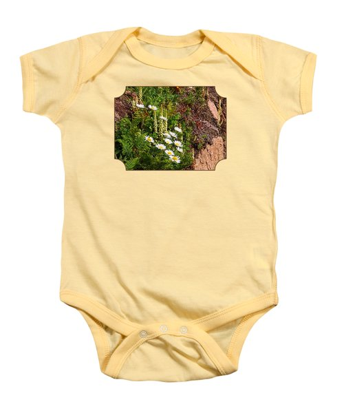 Wild Daisies In The Rocks Baby Onesie by Gill Billington