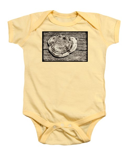 Baby Onesie featuring the photograph Wood Decay Fungi, Nagzira, 2011 by Hitendra SINKAR