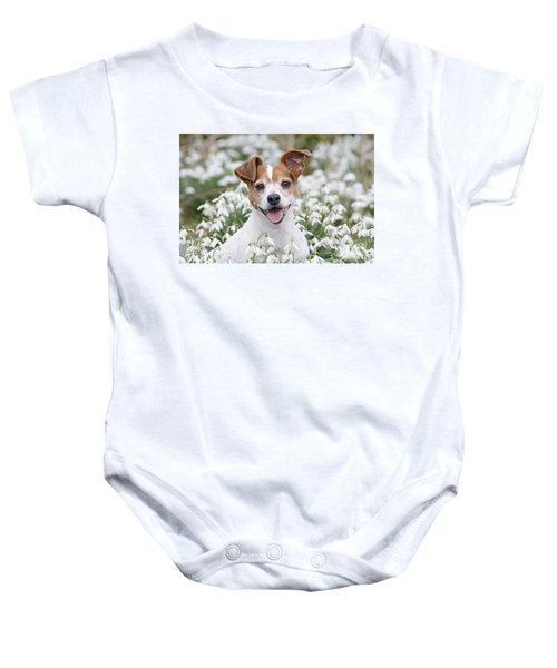 Jack Russell Terrier Baby Onesie