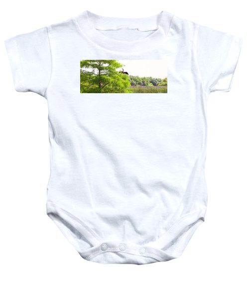 Anhinga Anhinga Anhinga On A Tree Baby Onesie by Panoramic Images