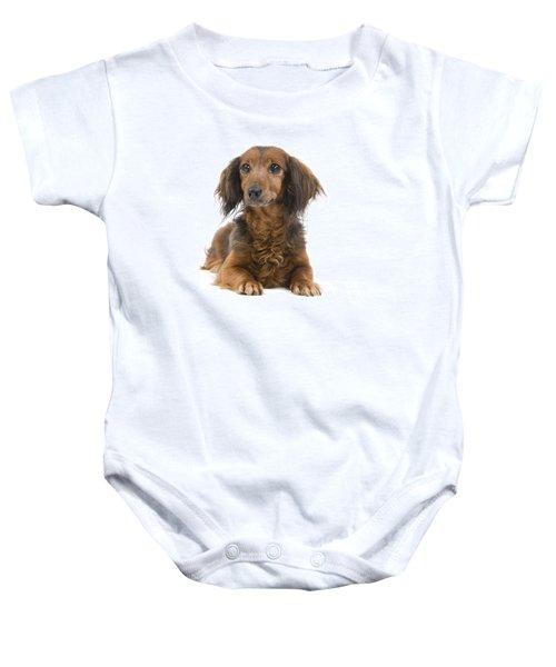 deab55d00 Long-haired Dachshund Baby Onesies | Fine Art America