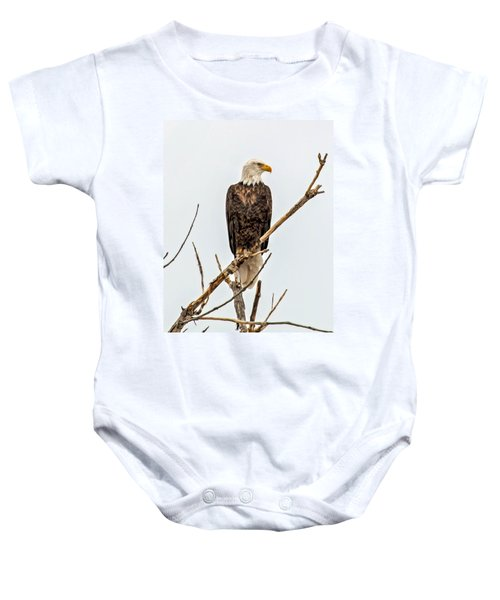 Bald Eagle On A Branch Baby Onesie