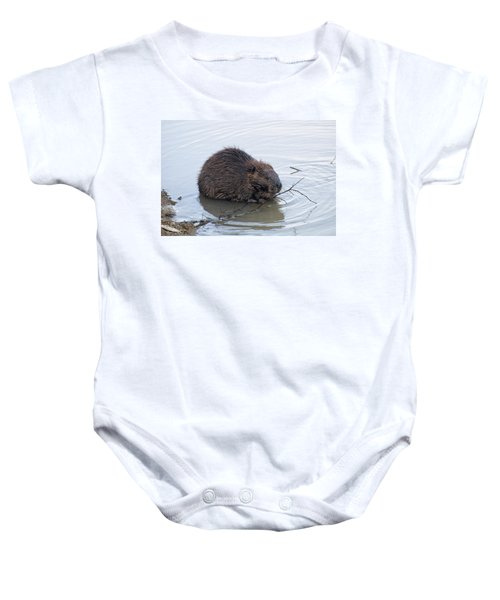 Beaver Chewing On Twig Baby Onesie by Chris Flees