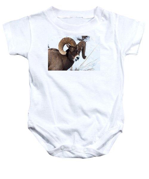 Bighorn Sheep Baby Onesie