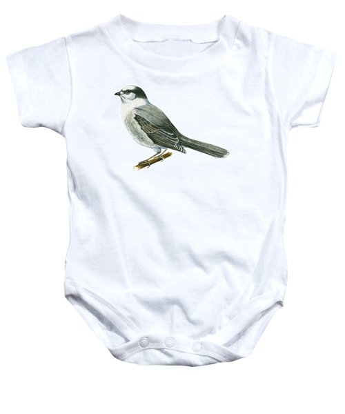 Canada Jay Baby Onesie by Anonymous