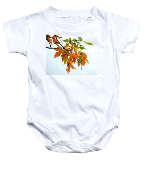 Changing Seasons Baby Onesie