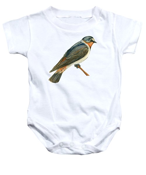 Cliff Swallow  Baby Onesie by Anonymous
