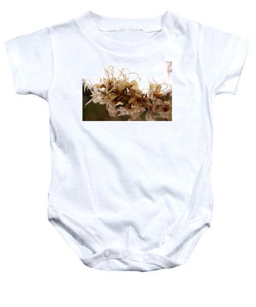 Curlleaf Mountain Mahogany Baby Onesie