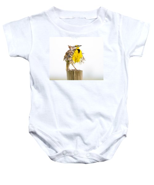 Flluffy Meadowlark Baby Onesie by Bill Swindaman