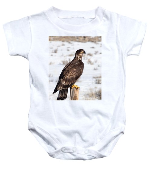 Golden Eagle On Fencepost Baby Onesie