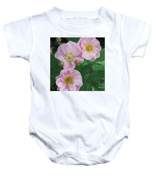Pink Roses Baby Onesie