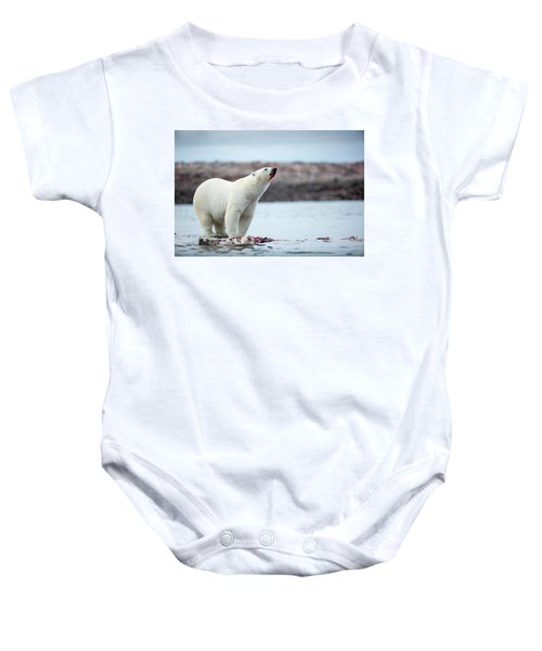 Polar Bears Feeding On Harbour Islands Baby Onesie