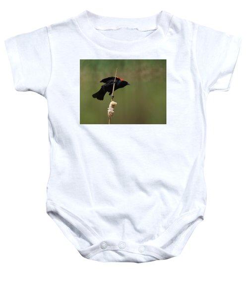 Red Winged Blackbird 3 Baby Onesie