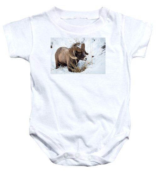 Rocky Mountain Bighorn Sheep Baby Onesie