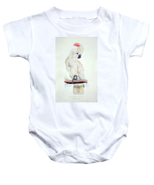 Salmon Crested Cockatoo Baby Onesie by Edward Lear